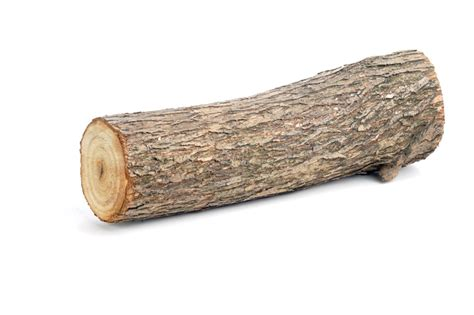 Intermediate+ Word of the Day: log – WordReference Word of