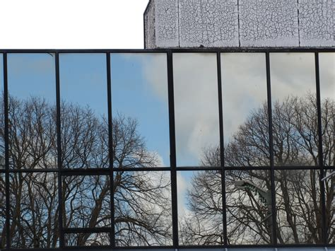 Kiwi Nomad's Wanderings: Mainly Square Reflections