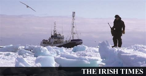 Norway's Arctic communities lament the end of the seal hunt