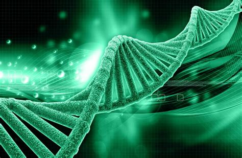 I Think, Therefore I Am: Epigenetics And How DNA Can