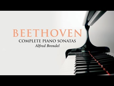 The young Beethoven was a child prodigy and played the