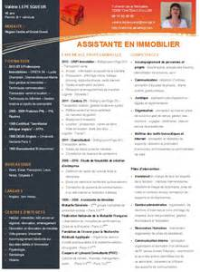 cv type immobilier