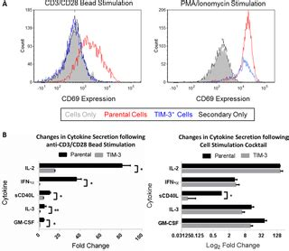 TIM-3 Suppresses Anti-CD3/CD28-Induced TCR Activation and