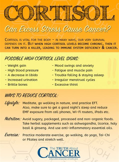High Cortisol Levels and Breast Cancer: What's the Connection?