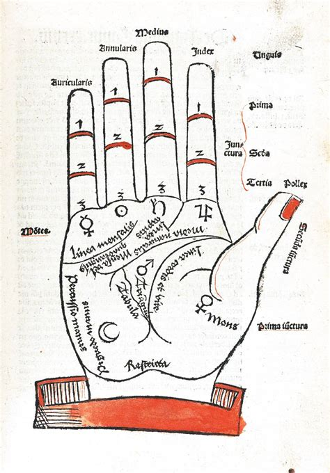 Entertainment – Palmistry – Red and black palmistry map