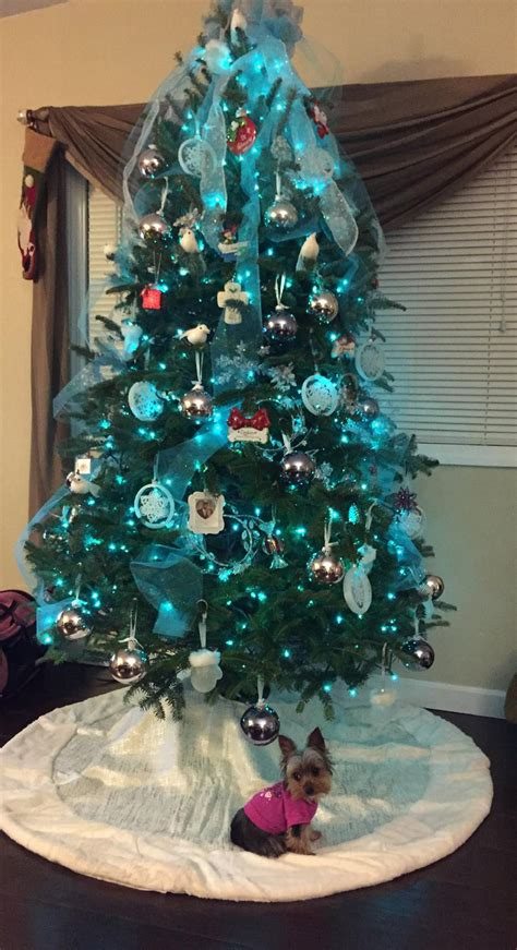 100 Teal Christmas Lights with 6 inch spacing on green wire